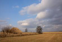 Februari 2015, Riet en Wolken